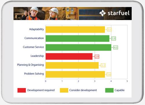 Strengths and Development Needs graph